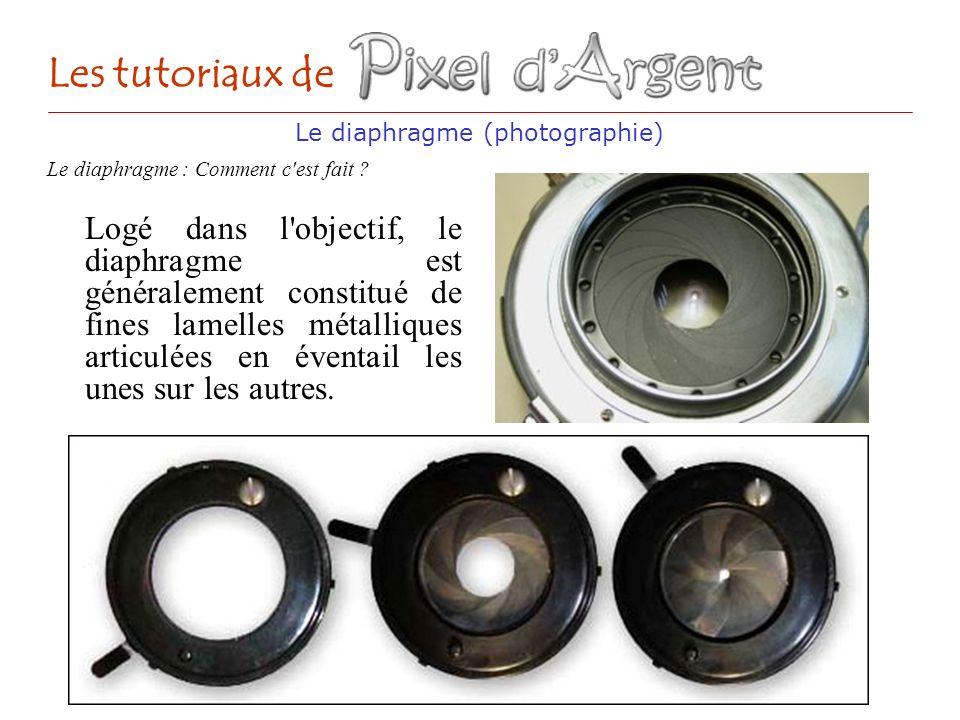 Les tutoriaux de Logé dans l'objectif, le diaphragme est généralement constitué de fines lamelles métalliques articulées en éventail les unes sur les