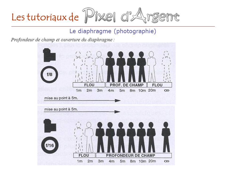 Le diaphragme (photographie) Les tutoriaux de Profondeur de champ et ouverture du diaphragme :