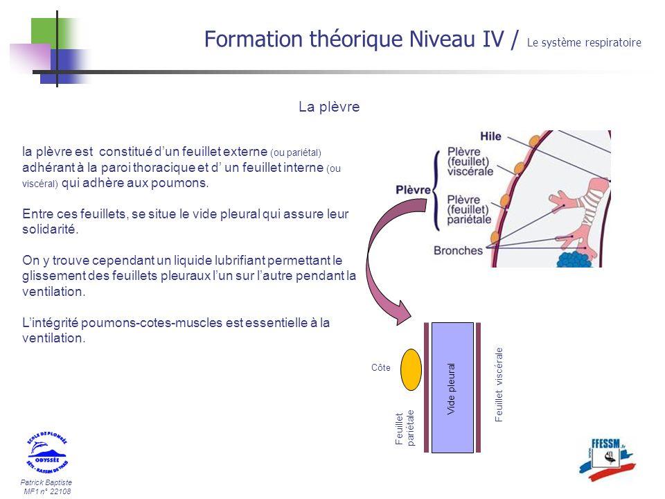 Patrick Baptiste MF1 n° 22108 Formation théorique Niveau IV / Le système respiratoire La plèvre la plèvre est constitué dun feuillet externe (ou parié