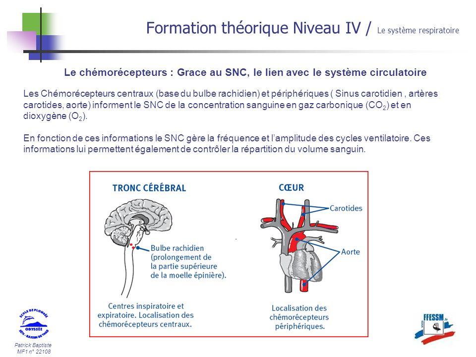 Patrick Baptiste MF1 n° 22108 Le chémorécepteurs : Grace au SNC, le lien avec le système circulatoire Les Chémorécepteurs centraux (base du bulbe rach
