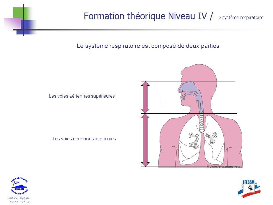 Patrick Baptiste MF1 n° 22108 Formation théorique Niveau IV / Le système respiratoire Les alvéoles pulmonaires Les alvéoles pulmonaires sont le siège des échanges gazeux (O2, N2, CO2).