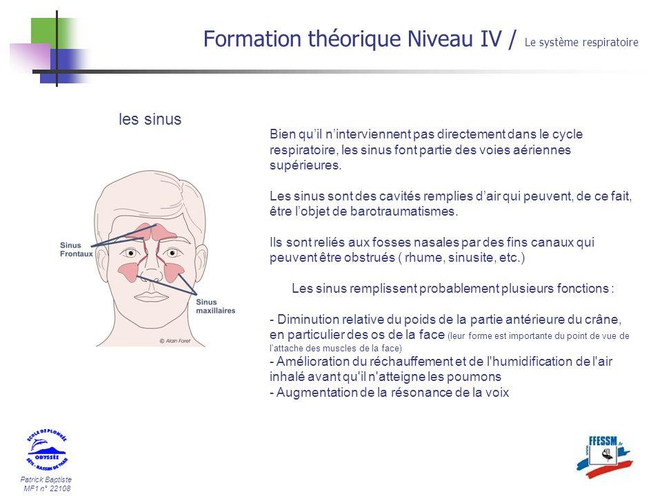 Patrick Baptiste MF1 n° 22108 Formation théorique Niveau IV / Le système respiratoire Nos poumons suivent sans cesse un cycle inspiration/expiration.