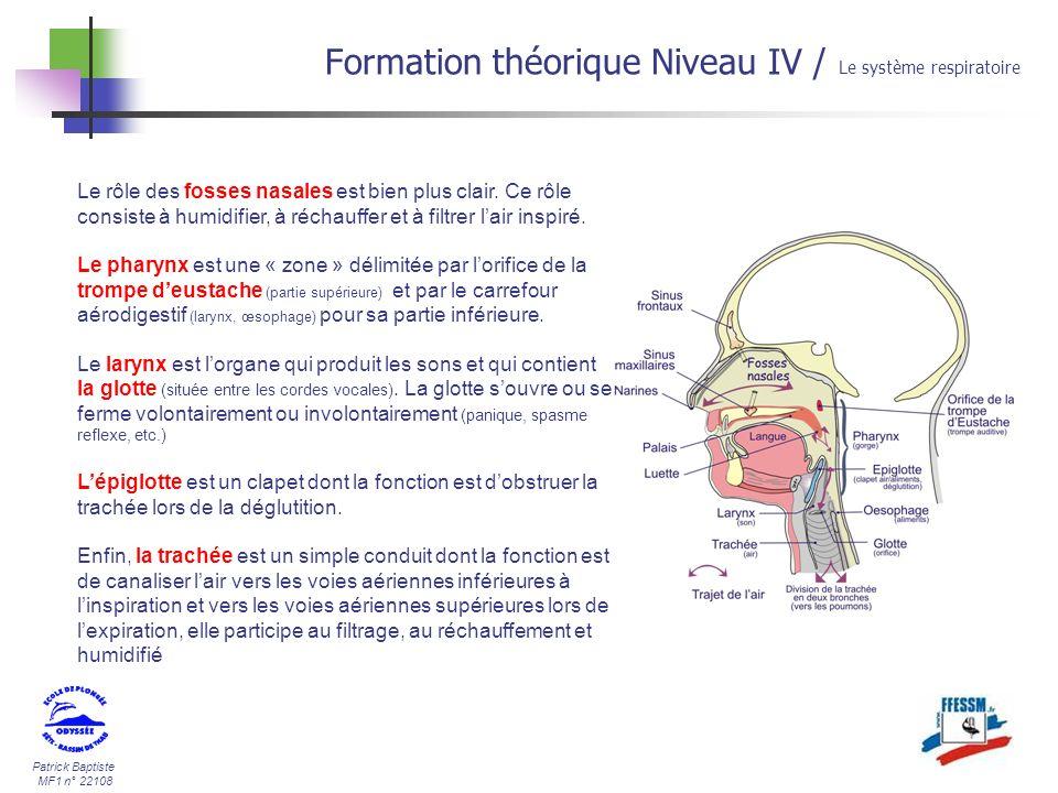Patrick Baptiste MF1 n° 22108 Formation théorique Niveau IV / Le système respiratoire Le rôle des fosses nasales est bien plus clair. Ce rôle consiste