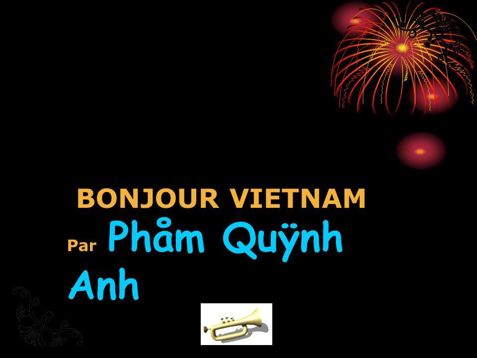 BONJOUR VIETNAM Par Phåm Quÿnh Anh