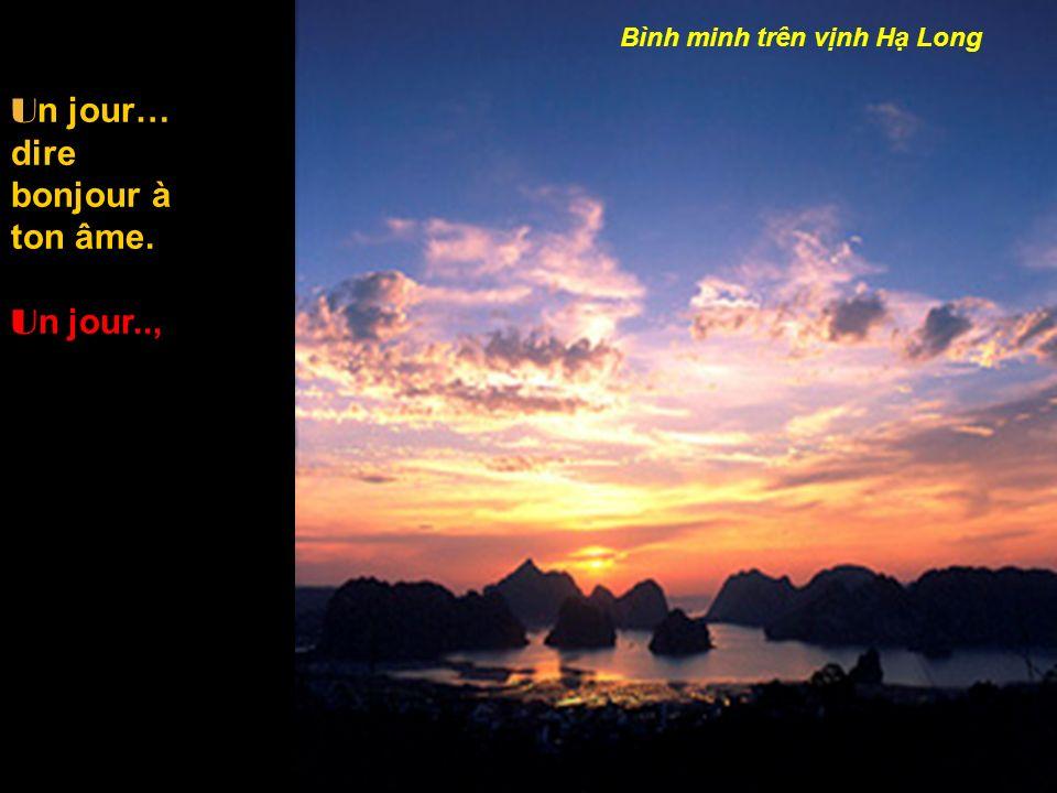 dans les rizières P o ur mes Mères D ans la prière D ans la lumière R evoir mes Frères,