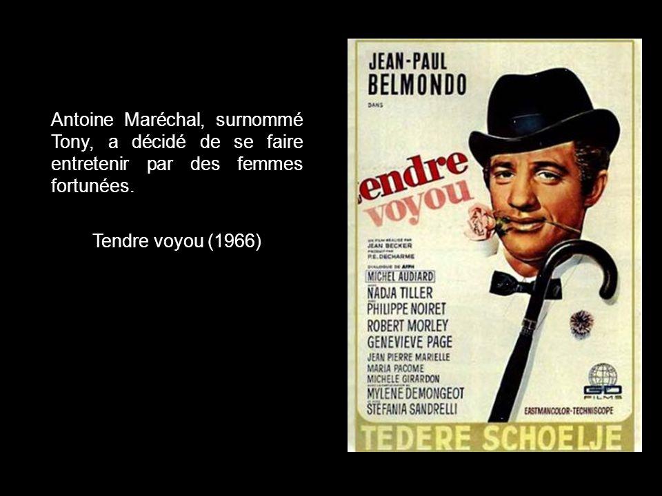 L'odyssée à travers la France de Ferdinand dit Pierrot le Fou et de son amie Marianne, poursuivis par des gangsters à la mine patibulaire. Pierrot le