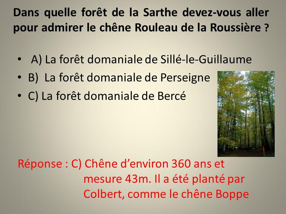 Dans quelle forêt de la Sarthe devez-vous aller pour admirer le chêne Rouleau de la Roussière .
