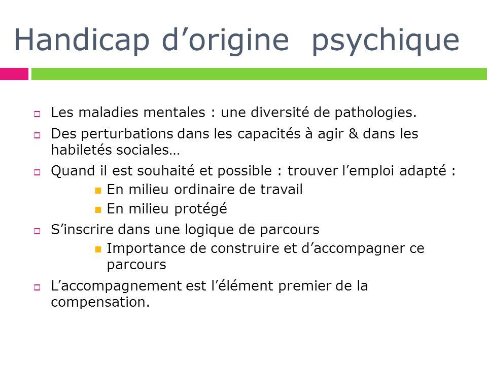 Handicap dorigine psychique Les maladies mentales : une diversité de pathologies. Des perturbations dans les capacités à agir & dans les habiletés soc