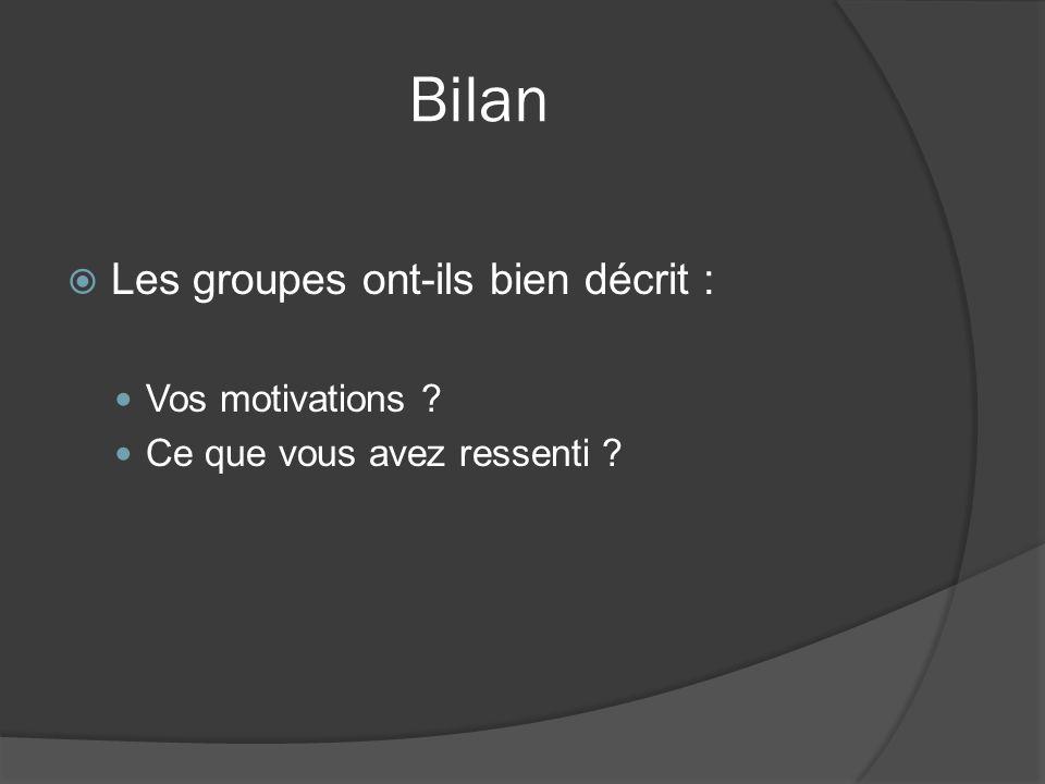 Bilan Les groupes ont-ils bien décrit : Vos motivations ? Ce que vous avez ressenti ?