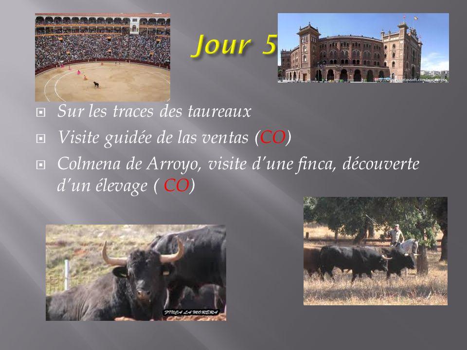 Sur les traces des taureaux Visite guidée de las ventas (CO) Colmena de Arroyo, visite dune finca, découverte dun élevage ( CO)