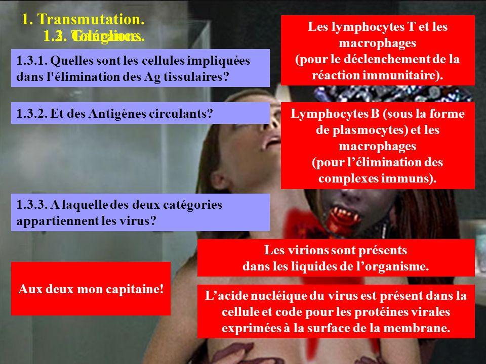 1. Transmutation. 1.2. Ganglions.1.3. Tolérance. Les lymphocytes T et les macrophages (pour le déclenchement de la réaction immunitaire). 1.3.1. Quell