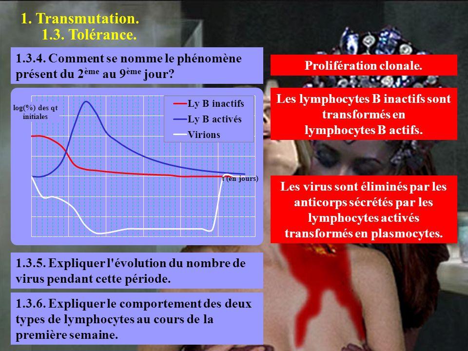 1. Transmutation. 1.3. Tolérance. Prolifération clonale. 1.3.4. Comment se nomme le phénomène présent du 2 ème au 9 ème jour? 1.3.5. Expliquer l'évolu