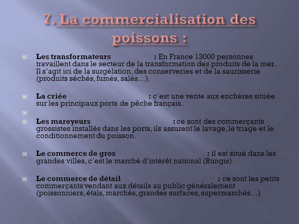 Les transformateurs : En France 13000 personnes travaillent dans le secteur de la transformation des produits de la mer. Il sagit ici de la surgélatio
