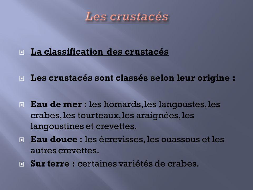 La classification des crustacés Les crustacés sont classés selon leur origine : Eau de mer : les homards, les langoustes, les crabes, les tourteaux, l