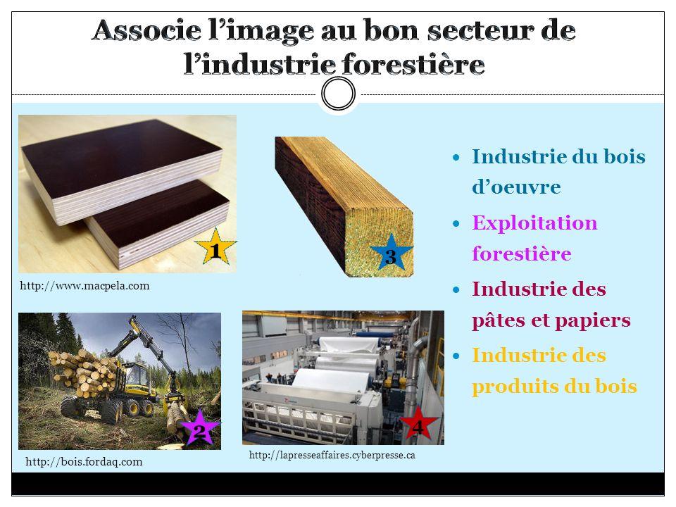 Industrie du bois doeuvre Exploitation forestière Industrie des pâtes et papiers Industrie des produits du bois http://lapresseaffaires.cyberpresse.ca http://bois.fordaq.com http://www.macpela.com 3 2 1 4