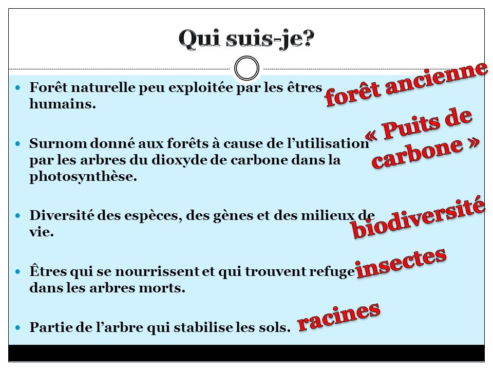 Forêt naturelle peu exploitée par les êtres humains. Surnom donné aux forêts à cause de lutilisation par les arbres du dioxyde de carbone dans la phot