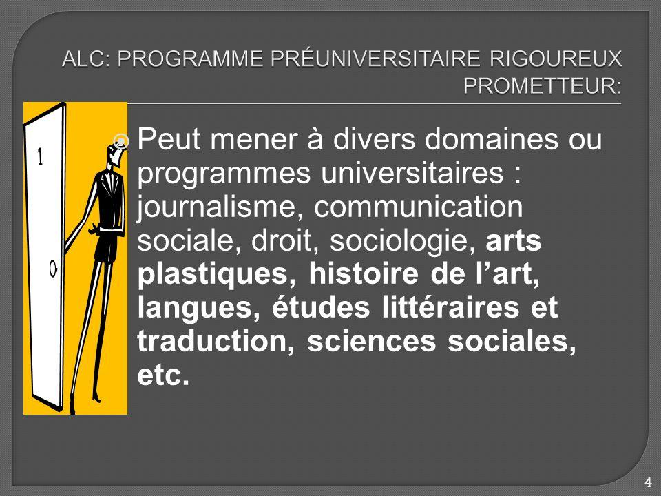 Peut mener à divers domaines ou programmes universitaires : journalisme, communication sociale, droit, sociologie, arts plastiques, histoire de lart, langues, études littéraires et traduction, sciences sociales, etc.