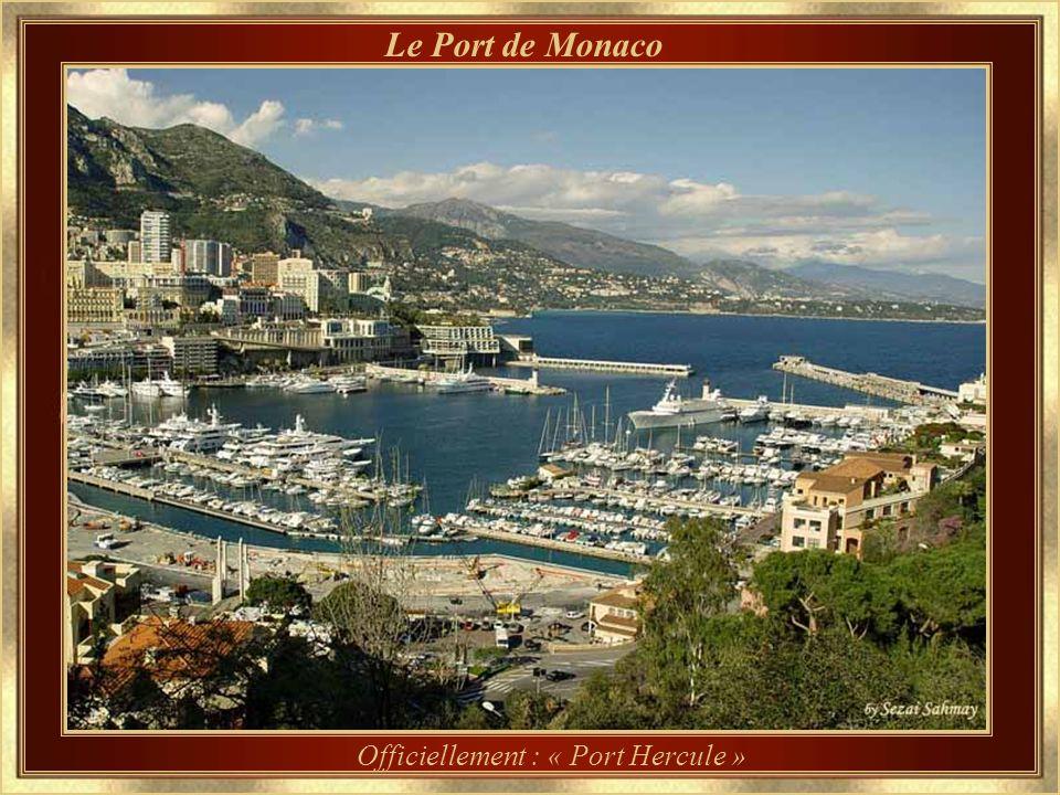 La Falaise Aperçu du Château des Grimaldi sur la falaise et du Port de Monaco.