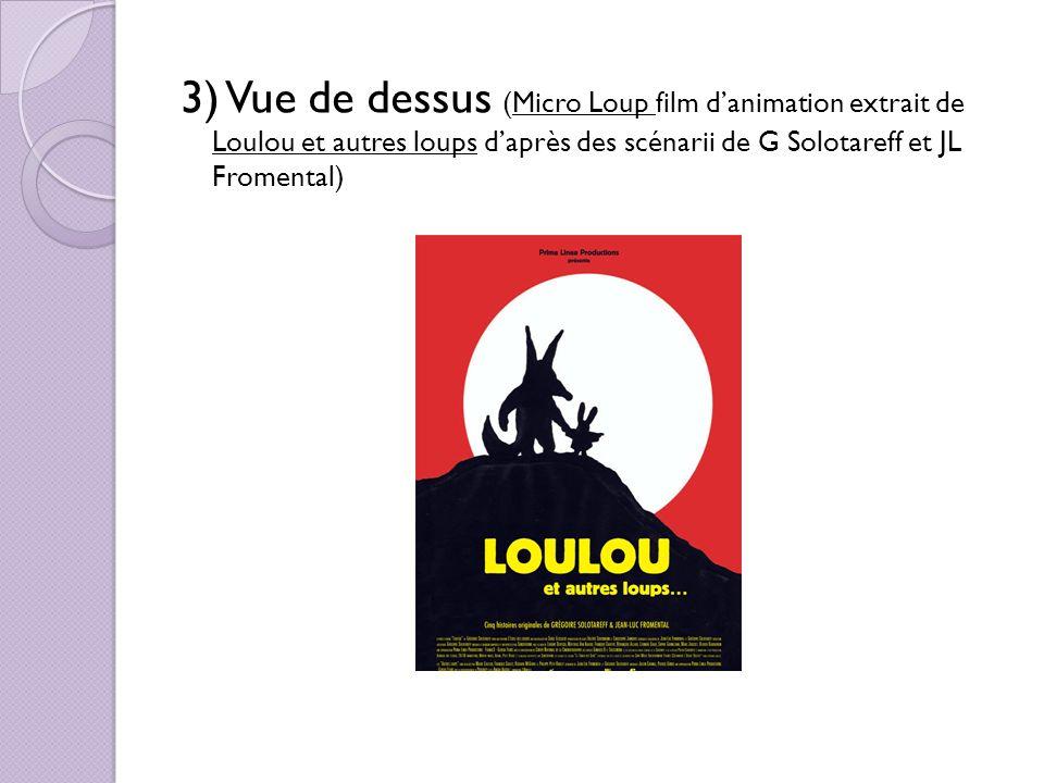 3) Vue de dessus (Micro Loup film danimation extrait de Loulou et autres loups daprès des scénarii de G Solotareff et JL Fromental)