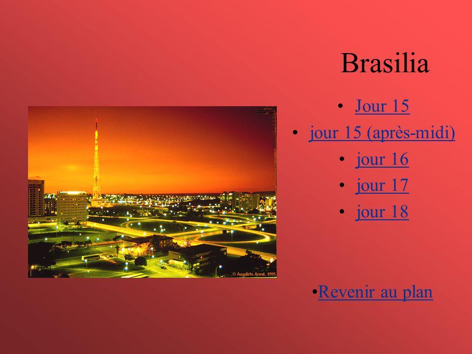 Brasilia Jour 15 jour 15 (après-midi) jour 16 jour 17 jour 18 Revenir au plan
