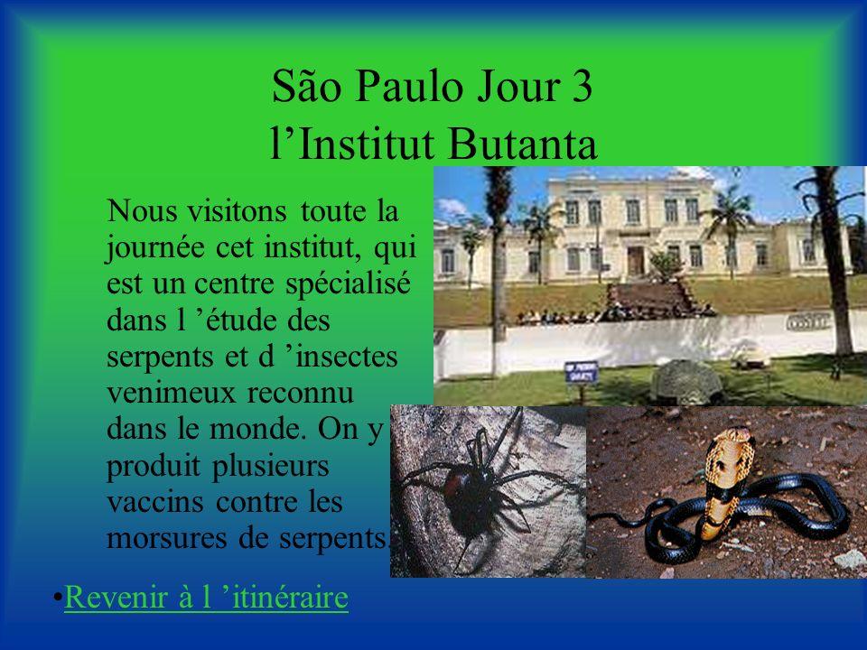 São Paulo Jour 3 lInstitut Butanta Nous visitons toute la journée cet institut, qui est un centre spécialisé dans l étude des serpents et d insectes venimeux reconnu dans le monde.