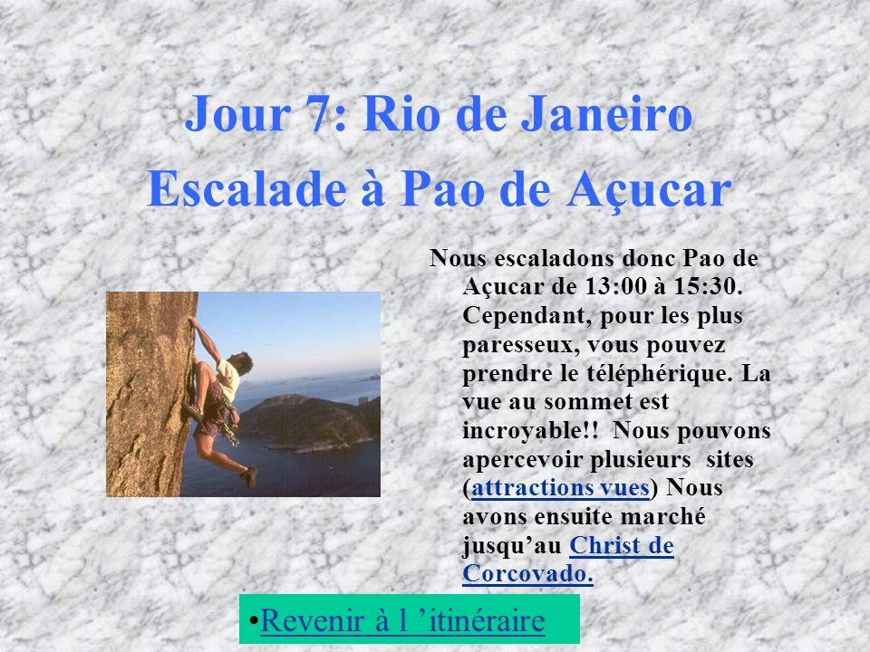 Jour 7: Rio de Janeiro Escalade à Pao de Açucar Nous escaladons donc Pao de Açucar de 13:00 à 15:30. Cependant, pour les plus paresseux, vous pouvez p