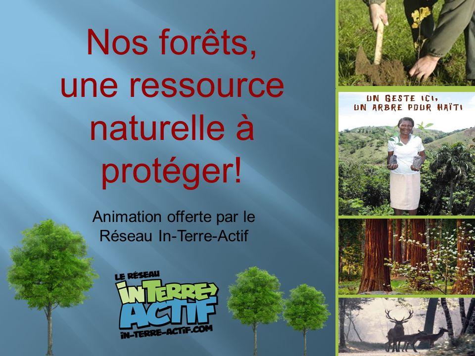 Nos forêts, une ressource naturelle à protéger! Animation offerte par le Réseau In-Terre-Actif