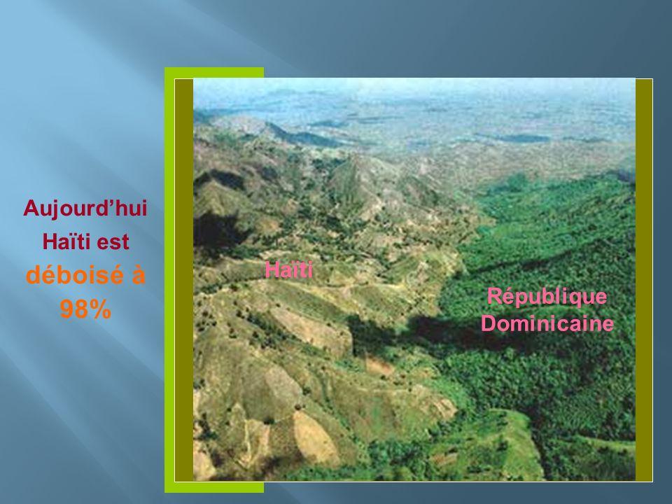 Insérer photo ici Aujourdhui Haïti est déboisé à 98% Haïti République Dominicaine