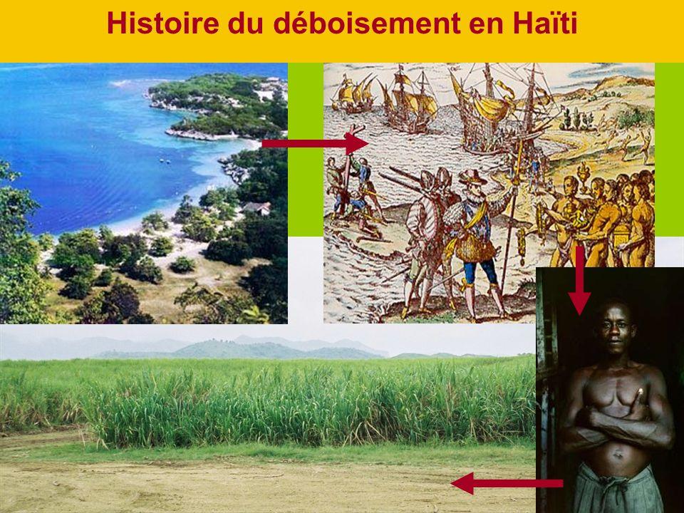 Histoire du déboisement en Haïti