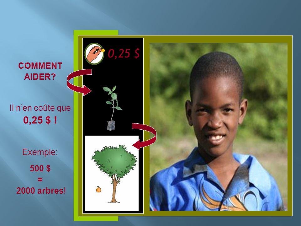 Insérer photo ici COMMENT AIDER? Il nen coûte que 0,25 $ ! Exemple: 500 $ = 2000 arbres! 0,25 $