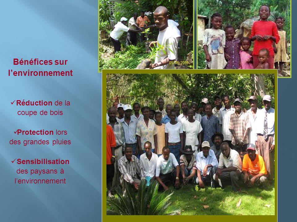 Insérer photo ici Bénéfices sur lenvironnement Réduction de la coupe de bois Protection lors des grandes pluies Sensibilisation des paysans à lenviron