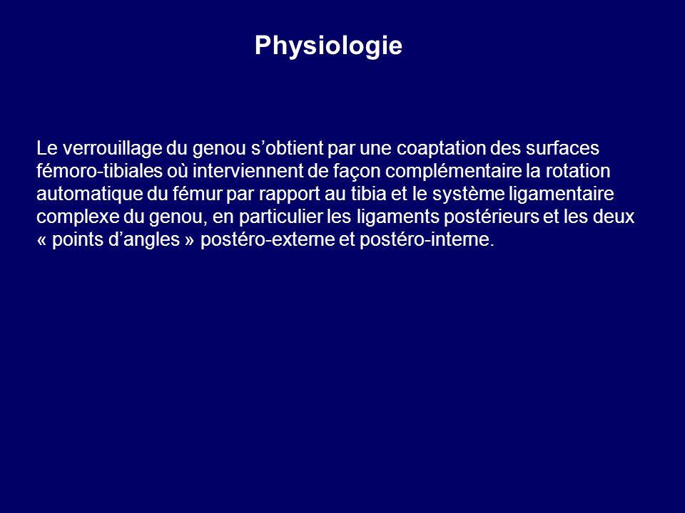 Le verrouillage du genou sobtient par une coaptation des surfaces fémoro-tibiales où interviennent de façon complémentaire la rotation automatique du