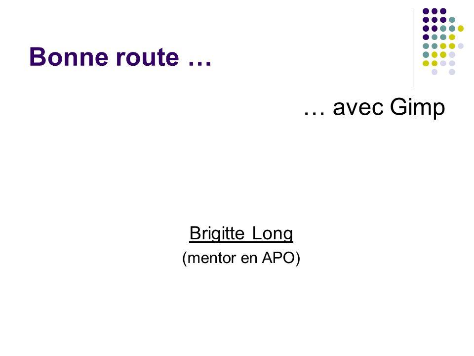 Bonne route … … avec Gimp Brigitte Long (mentor en APO)