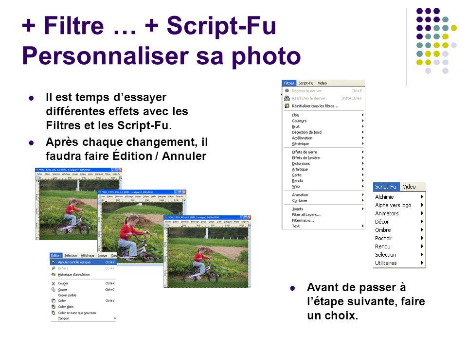 + Filtre … + Script-Fu Personnaliser sa photo Il est temps dessayer différentes effets avec les Filtres et les Script-Fu.