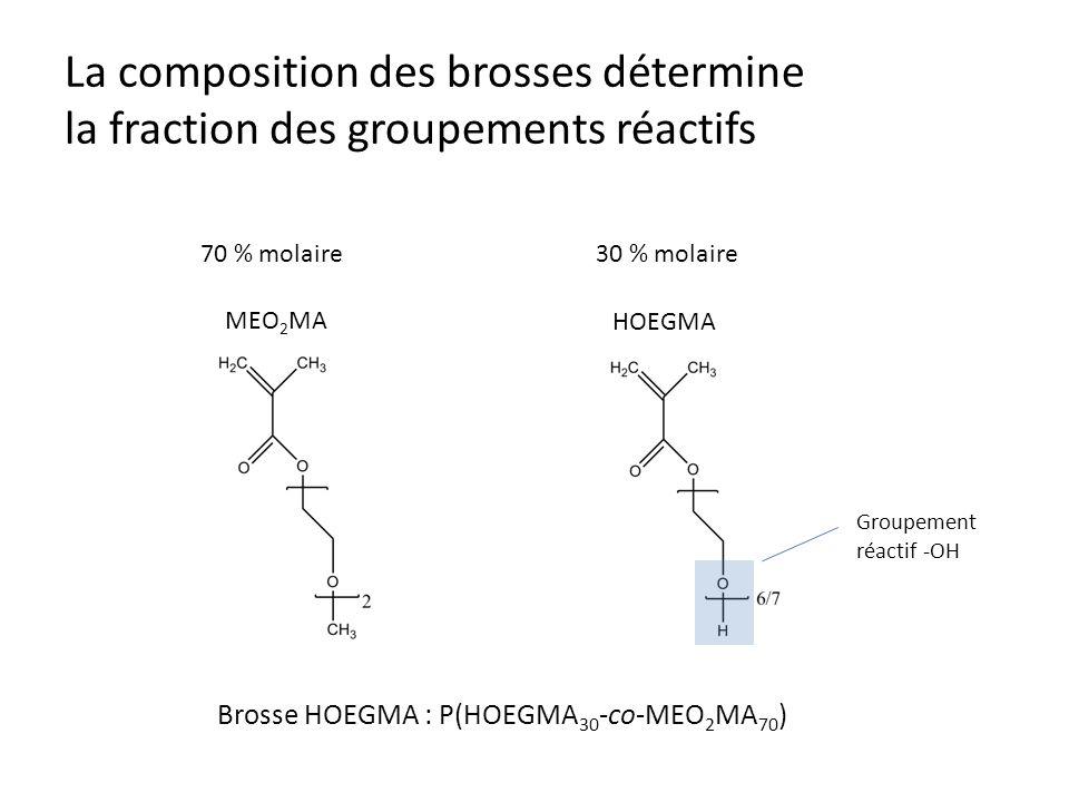 La composition des brosses détermine la fraction des groupements réactifs 70 % molaire30 % molaire Groupement réactif -OH MEO 2 MA HOEGMA Brosse HOEGM
