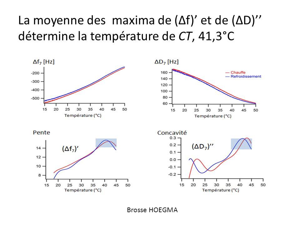 La moyenne des maxima de (Δf) et de (ΔD) détermine la température de CT, 41,3°C Brosse HOEGMA