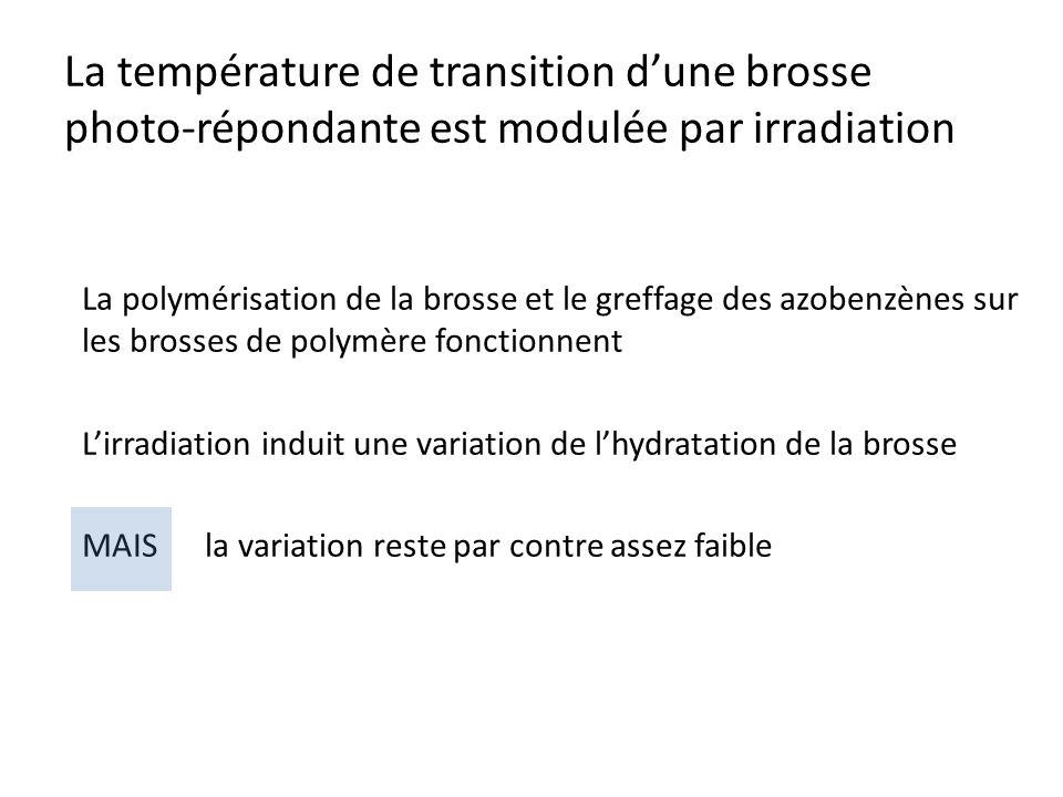 La température de transition dune brosse photo-répondante est modulée par irradiation La polymérisation de la brosse et le greffage des azobenzènes su
