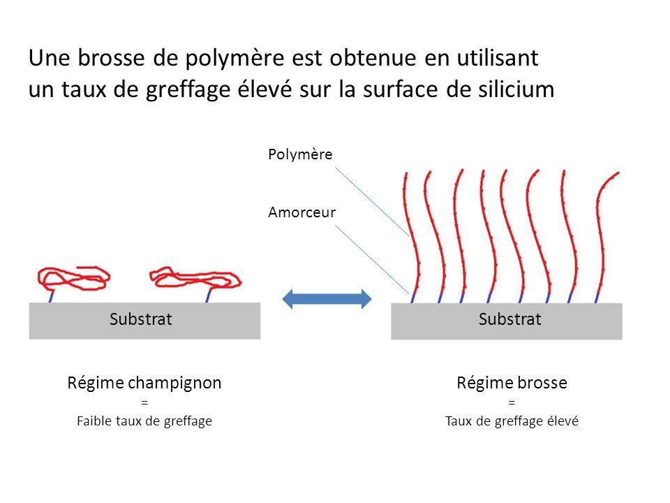 Une brosse de polymère est obtenue en utilisant un taux de greffage élevé sur la surface de silicium Amorceur Polymère Substrat Régime champignon = Faible taux de greffage Régime brosse = Taux de greffage élevé