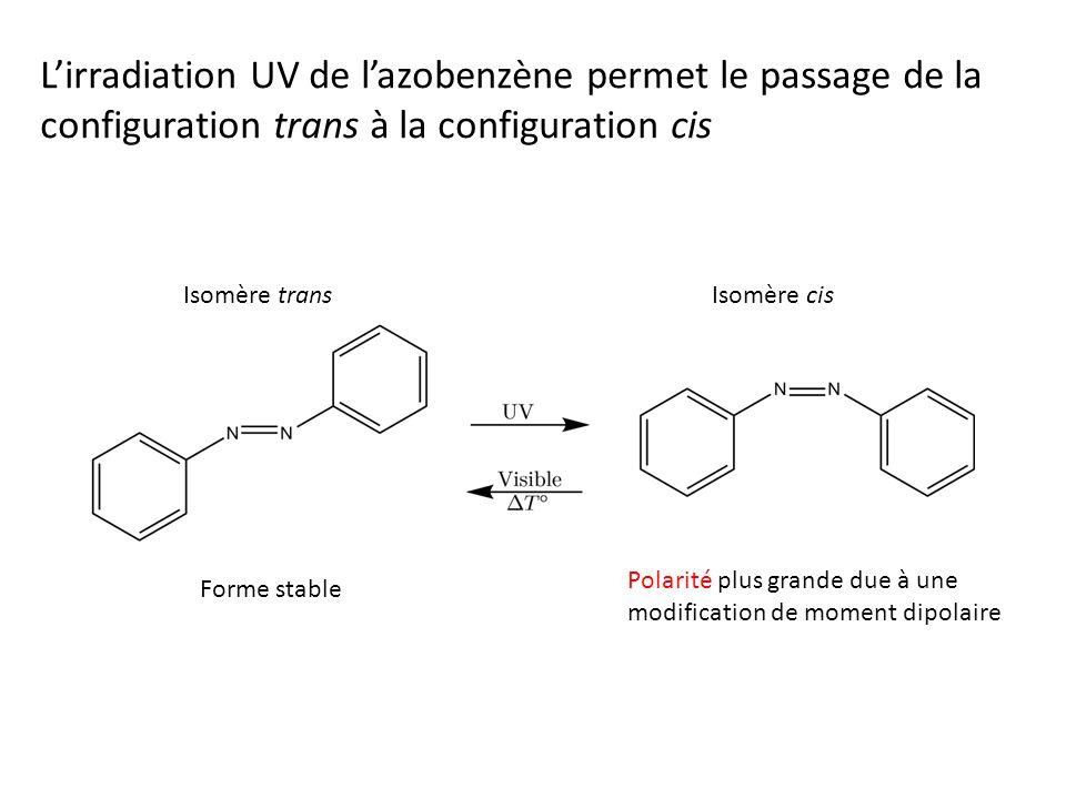 Lirradiation UV de lazobenzène permet le passage de la configuration trans à la configuration cis Forme stable Polarité plus grande due à une modification de moment dipolaire Isomère transIsomère cis