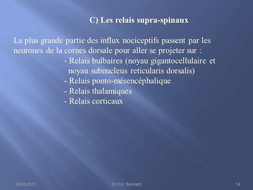 C) Les relais supra-spinaux La plus grande partie des influx nociceptifs passent par les neurones de la cornes dorsale pour aller se projeter sur : -