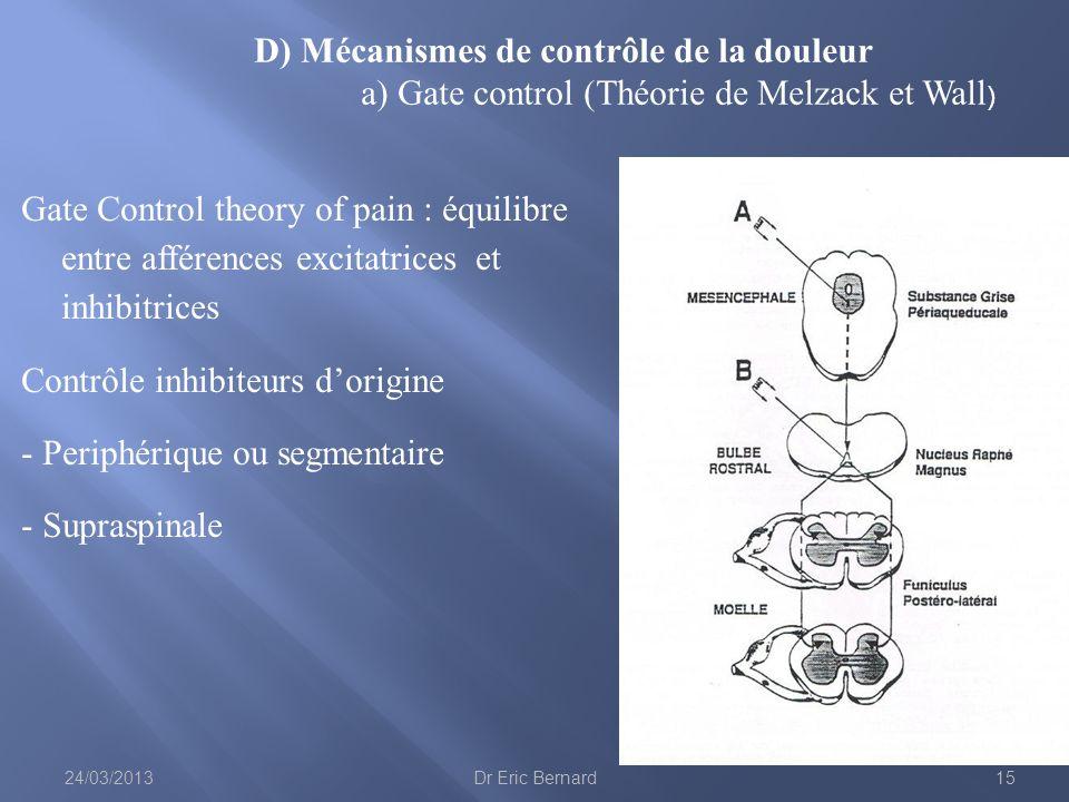 Gate Control theory of pain : équilibre entre afférences excitatrices et inhibitrices Contrôle inhibiteurs dorigine - Periphérique ou segmentaire - Su