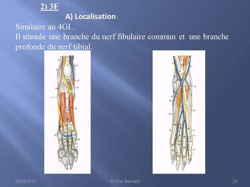 2) 3F A) Localisation : Similaire au 4GI. Il stimule une branche du nerf fibulaire commun et une branche profonde du nerf tibial. 24/03/201322Dr Eric