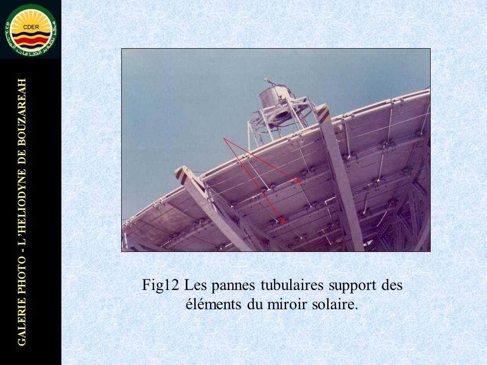 GALERIE PHOTO - L HELIODYNE DE BOUZAREAH Fig12 Les pannes tubulaires support des éléments du miroir solaire.
