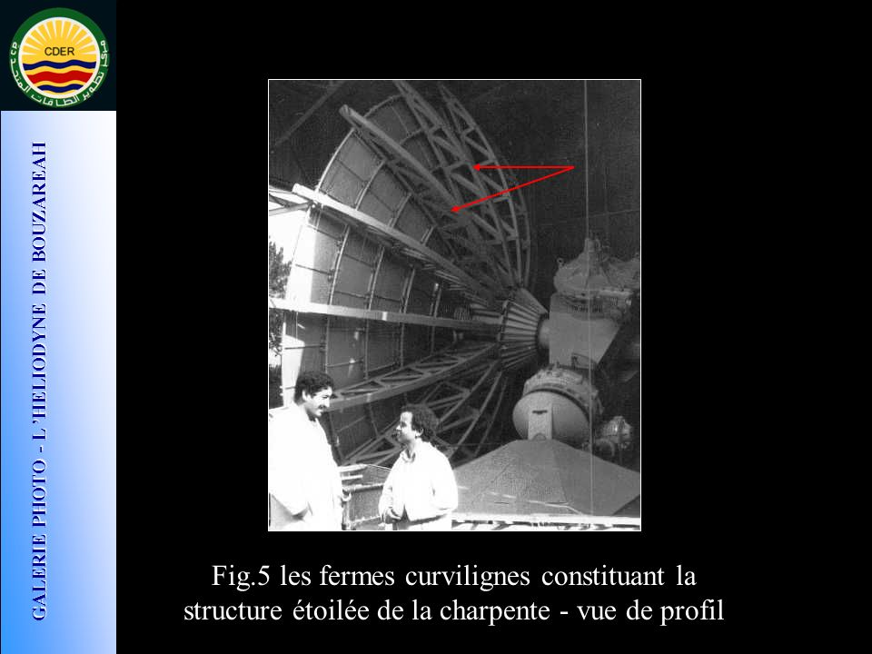 Fig.5 les fermes curvilignes constituant la structure étoilée de la charpente - vue de profil