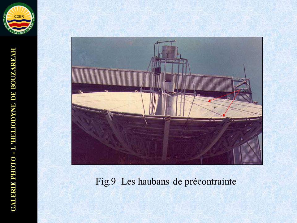 GALERIE PHOTO - L HELIODYNE DE BOUZAREAH Fig.9 Les haubans de précontrainte