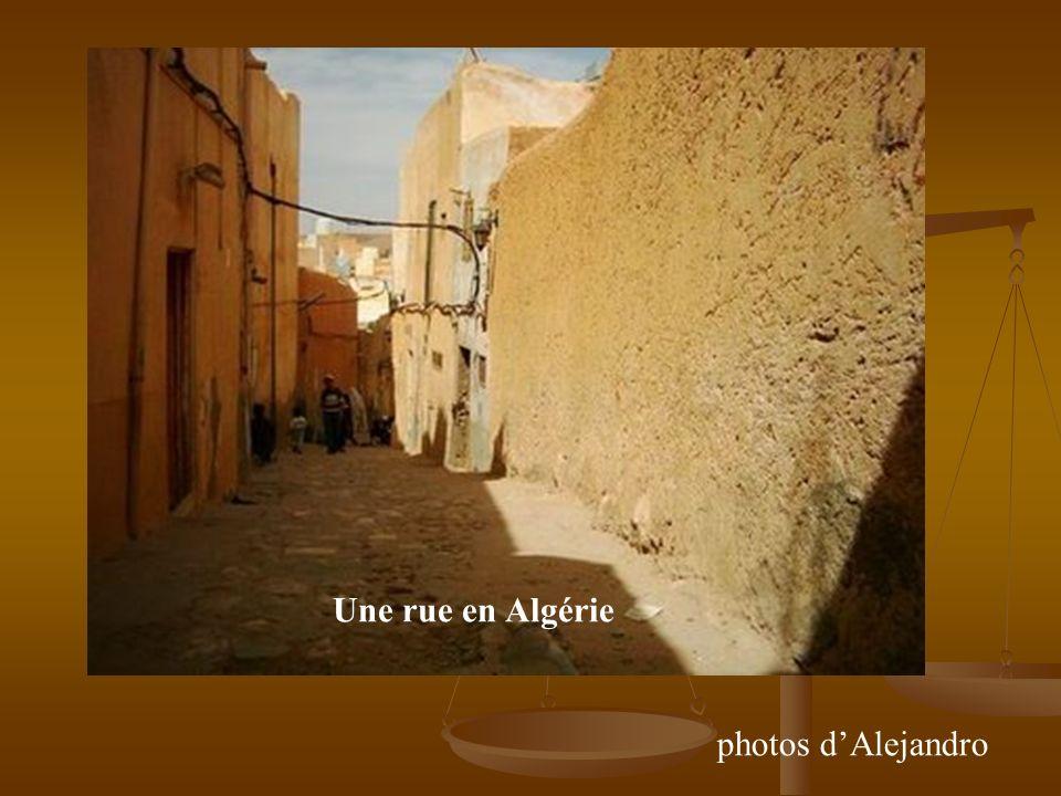 Une rue en Algérie photos dAlejandro