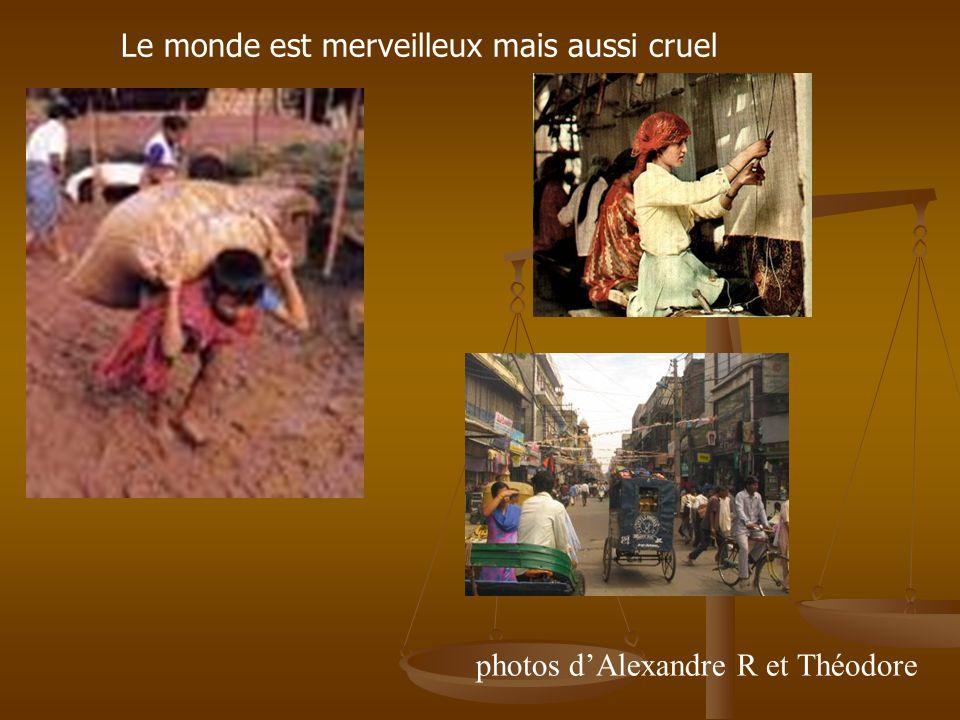 photos dAlexandre R et Théodore Le monde est merveilleux mais aussi cruel