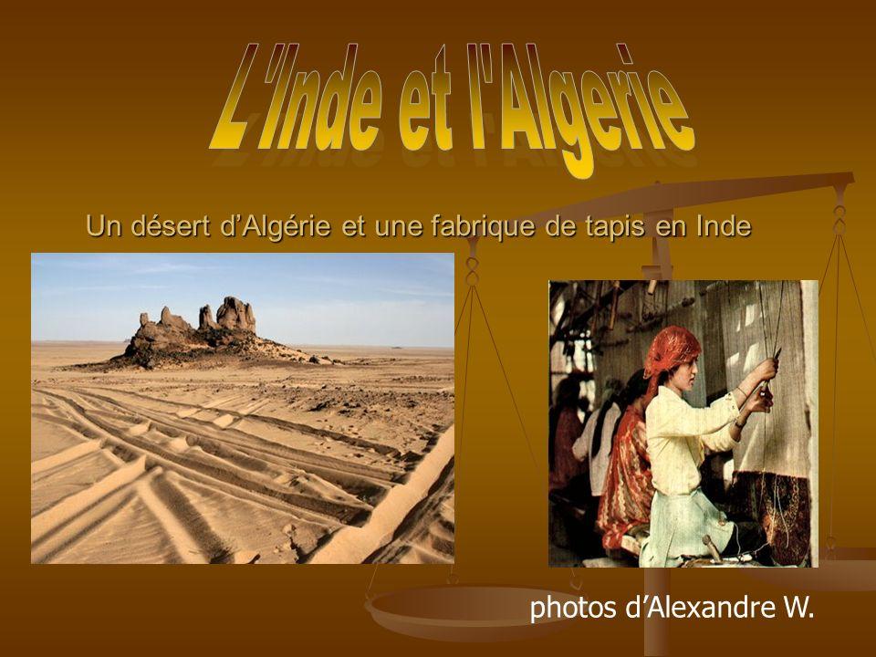 Un désert dAlgérie et une fabrique de tapis en Inde photos dAlexandre W.