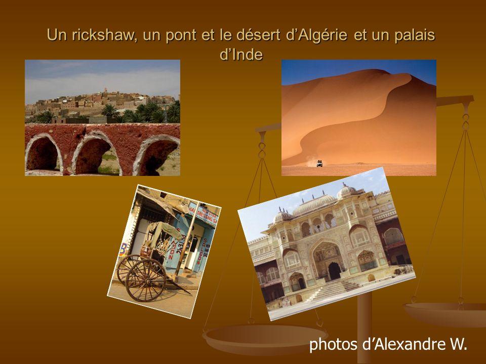 Un rickshaw, un pont et le désert dAlgérie et un palais dInde photos dAlexandre W.