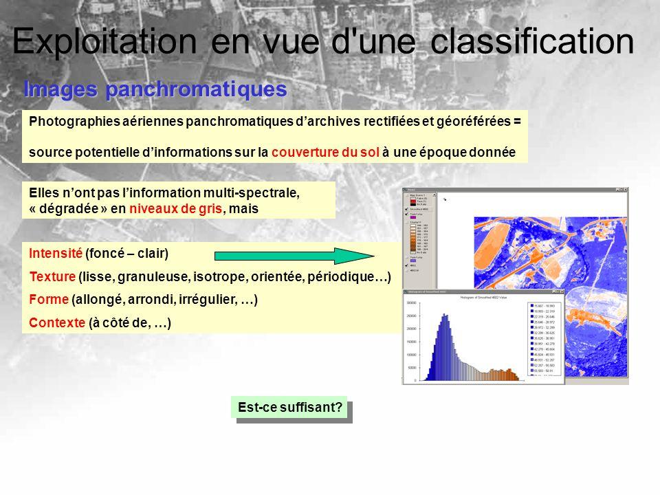 Photographies aériennes panchromatiques darchives rectifiées et géoréférées = source potentielle dinformations sur la couverture du sol à une époque d